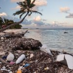 The price we pay for plastic: saving the ocean from one of the world's worst addictions.