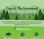trees-and-the-environment-why-life-depends-on-them-copy