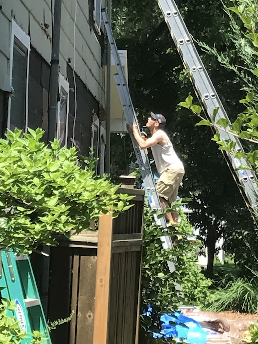 Jo-Bear Climbing Ladder